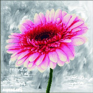 No Count Cross Stitch Kit, PINK DAHLIA, 43 x 43cm  Needleart World