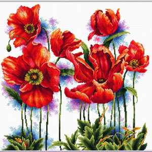 Needleart World No Count Cross Stitch Kit LOVELY POPPIES, 40 x 40cm